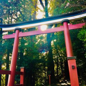 2度目の霧島東神社