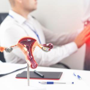 子宮筋腫〜最も頻度の高い婦人科腫瘍〜