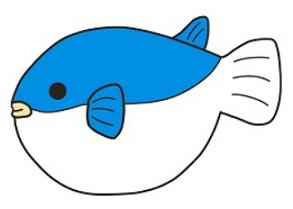 フグを海で釣り自宅に持ち帰り調理して食べると、、