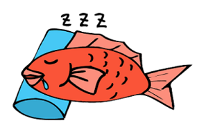 """魚を生きたまま、""""水無し""""で輸送する方法の話"""