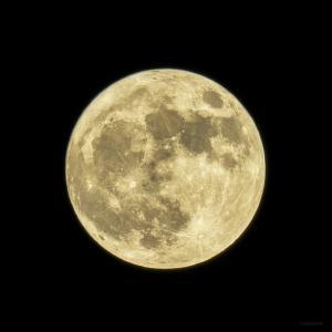 満月ですね。言葉を出してね