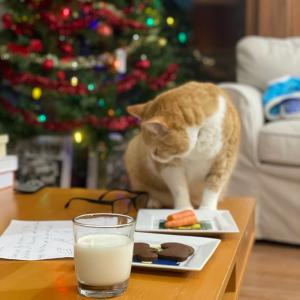 我が家のクリスマス伝統