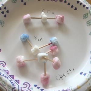 子供とおうち遊び①:10歳・7歳編