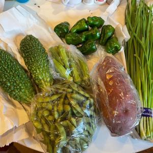 アメリカで日本の野菜ゲット!