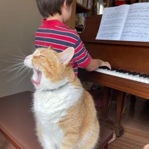 ピアノ・チェロ・バイオリン進捗記録 8/29 - 9/4 + スマホは何歳から?