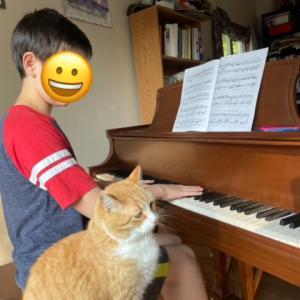 ピアノ・チェロ・バイオリン進捗記録 9/12 - 9/19 + 息子は母を見ているyo