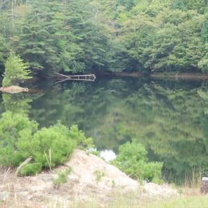 82 クロボヤ池