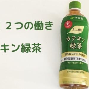 【コレステロール・中性脂肪対策】伊藤園の2つの働きカテキン緑茶を飲んでみた