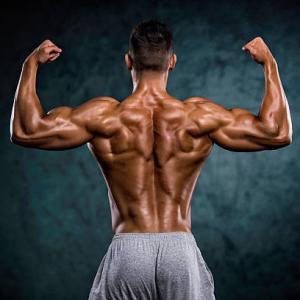 【女性必見】広背筋を鍛えるべき3つのメリットと筋トレ法を紹介