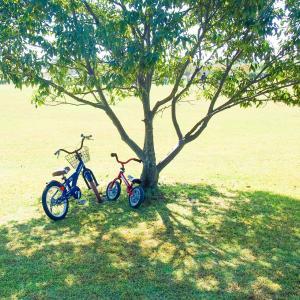 へんしんバイクやケッターサイクルなどおすすめのペダル後付けバランスバイク徹底比較!
