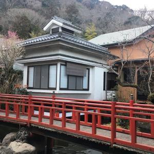 【神奈川 / 飯山温泉】日本一強アルカリ!とろとろ温泉にて1泊。