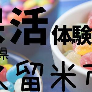 【福岡県久留米市】の保育園申し込み体験談 30代前半女性