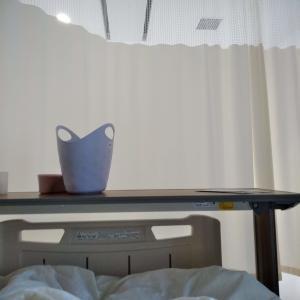 【甲状腺がん体験記3】甲状腺がんの悪性腫瘍の特徴