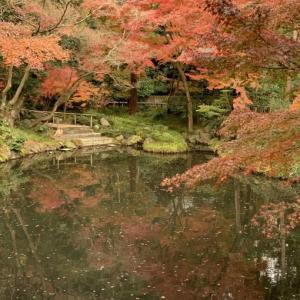 🍁白旗神社🍁 鎌倉国宝館 🍁