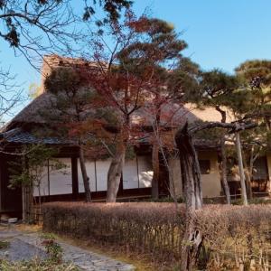 鎌倉の紅葉-2