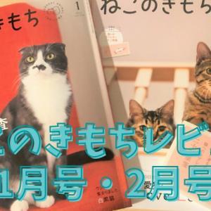 ねこのきもち2021年1・2月号 猫のストレス耐性チェックがピッタリ!【レビュー】