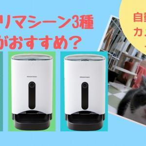 【カリカリマシーン/SP/ECO】自動給餌器の違いを比較!一人暮らしにおすすめは?