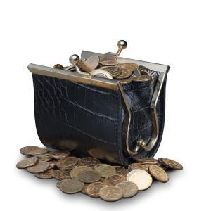 【貯金出来ない体質改善】お金が貯まらない人の財布にあるもの5選
