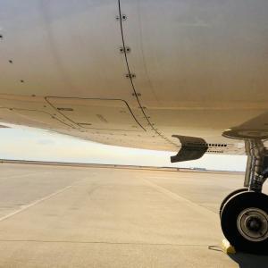 飛行機のカンパニー無線(カンパニーラジオ)の通信内容をスタッフ目線で解説
