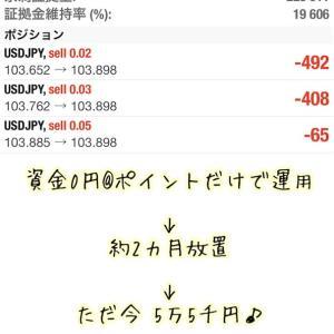 0円運用レポート@ 今週もしっかり増えましたょ~( *´艸`)