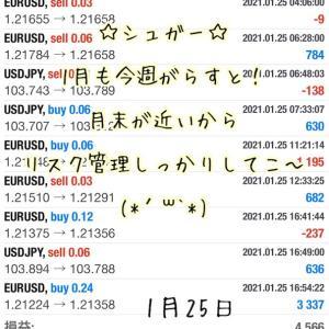 1月25日・自動売買ソフトの収益報告@ 値動き少なめ~な月曜日(*´ω`*)