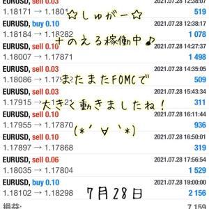 7月28日・自動売買ソフト『 Sugar(しゅがー)』@ またまたFOMCで大きな値動ききました~(/・ω・)/