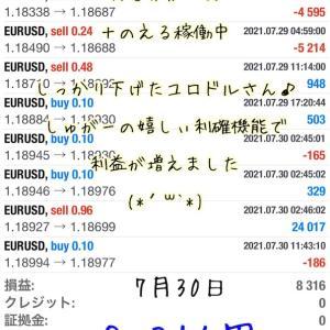 7月30日・自動売買ソフト『 Sugar(しゅがー)』@ 7月の最終日~(*'▽')/