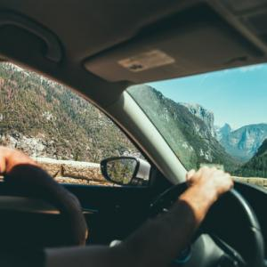 《旅行》ニュージーランド10日間の旅 6日目: ワイトモからオークランドへ ~ハミルトンへ寄り道~
