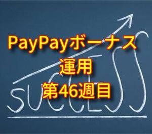 【長期積立】PayPayボーナス運用・週報・第46週目・チャレンジコースへ自動追加が最強の投資法