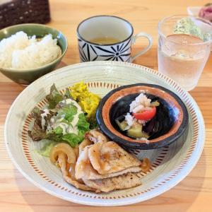 2021/3/9 NEW OPEN★【 ほぼ毎日カフェ 】さんでランチ【安城市】