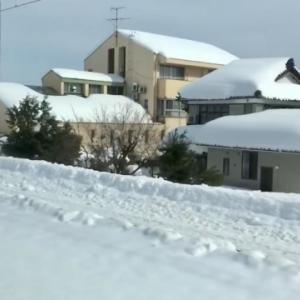 雪害で電力需給のひっ迫!本当にカーボンニュートラルできるの?