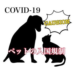 【海外で暮らす人に知ってほしい】新型コロナウイルスによるペットの入国規制