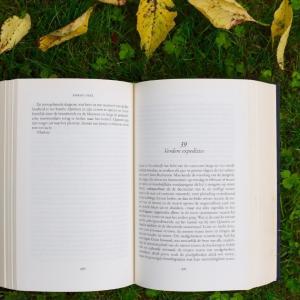 【6ヶ月で50冊の本を読んだ僕が伝える】おすすめの読書法