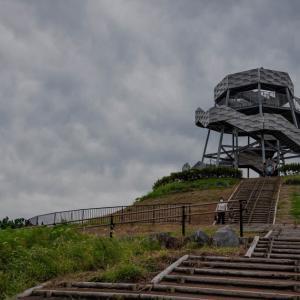 名前負けしないかっこよさ 田子の浦の「富士山ドラゴンタワー」