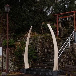 クジラとともに生きる 太地町の鯨骨鳥居(えびす神社)