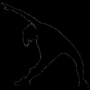 【現役理学療法士の手引き】 ~ジグリング⑤腰をゆらゆらのエクササイズ~ ゆらゆら動くだけで、運動にもなって痛みも改善!?