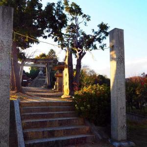 墳丘墓の頂きに建つ「鯉喰神社」