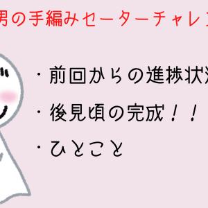 アラサー男の手編みセーターチャレンジ【#2】