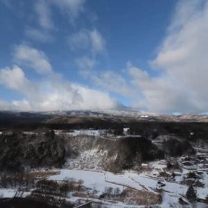 2021年1/4~開田高原の野鳥の森~オオマシコ