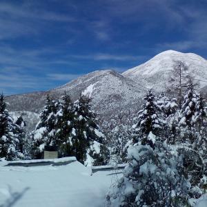 大雪の後・スピーカーケーブルの自作