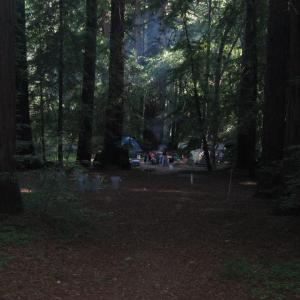 野外キャンプ