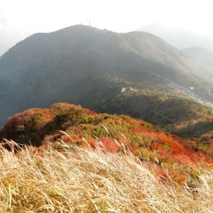 妙見岳山頂からの景色:長崎県雲仙市