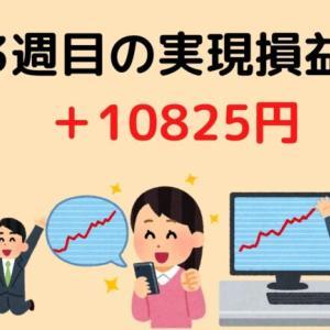1月3週目の実現損益結果 10825円!!