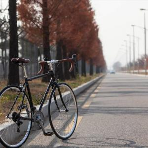 車にクロスバイク乗せて観光地に行ってクロスバイクで観光するの楽しすぎワロタw