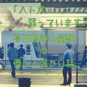 「ハトが弱っています」葛西臨海公園駅の優しく温かい話