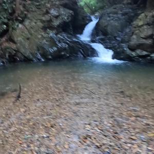 滋賀葛川渓流釣り(皆子山水系、滋賀足尾谷から京都大原尾越へ道なきゴルジュを釣行)