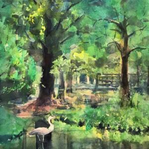 透明水彩スケッチ「新緑の水辺」鶴見緑地せせらぎエリア
