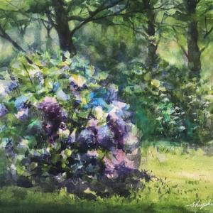 透明水彩スケッチ「六月の花の谷にて」鶴見緑地