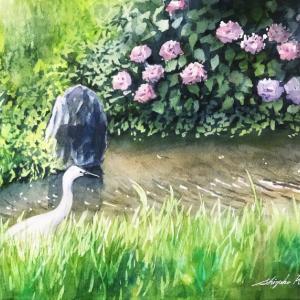 透明水彩画「六月の水辺」