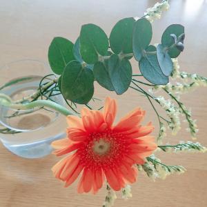 【PR】bloomee ときめきが続く、お花の定期便